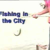 FishingintheCityCover.PNG