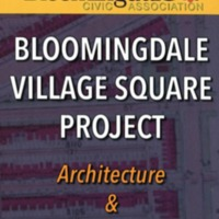 Bloomingdale Village Square Project: Architecture & Design Issues