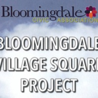 Bloomingdale Village Square Project: Project Overview